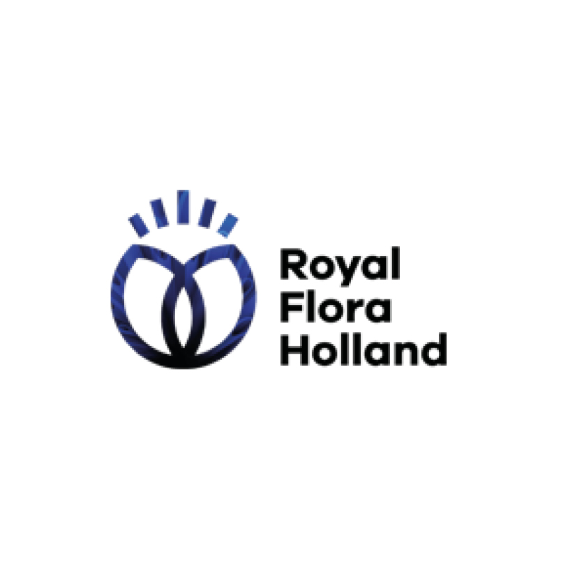 https://vepa.nl/wp-content/uploads/2020/02/Royal-Flora-Holland.jpg
